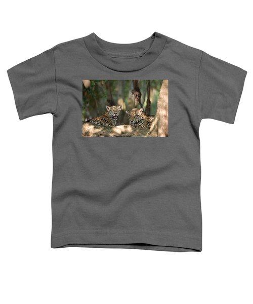 Jaguars Panthera Onca Resting Toddler T-Shirt