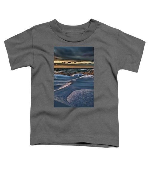 January Saugatuck Blues Michigan Toddler T-Shirt