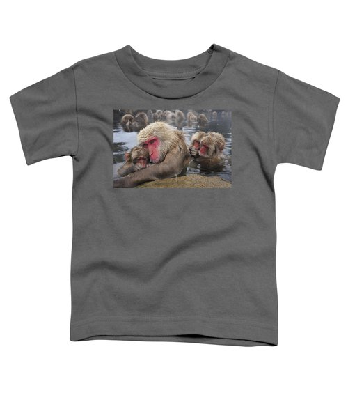 Japanese Macaque Grooming Mother Toddler T-Shirt