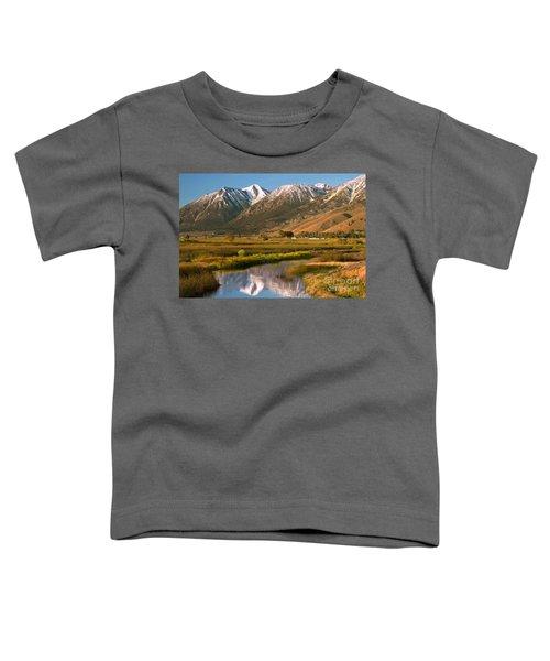 Job's Peak Reflections Toddler T-Shirt