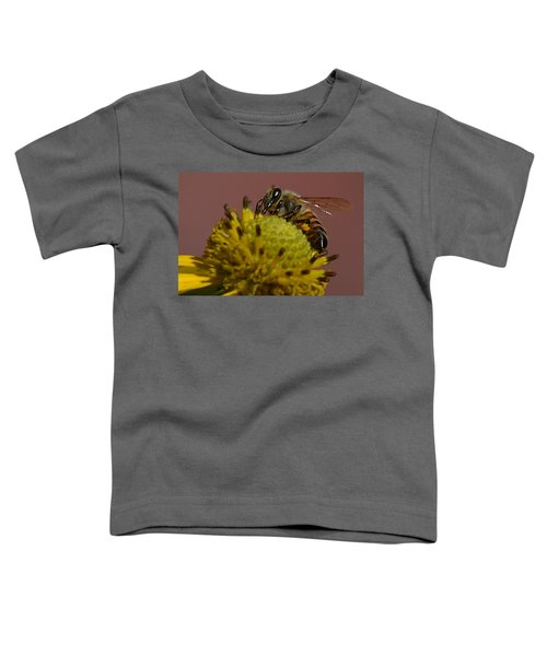 Just Bee Toddler T-Shirt