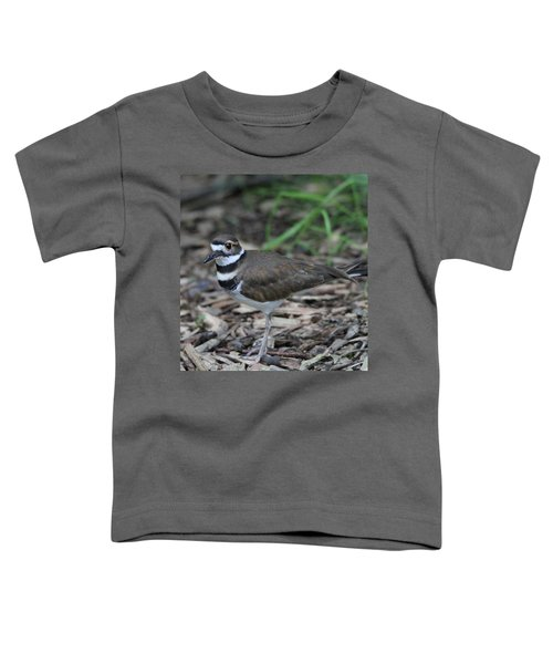 Killdeer Toddler T-Shirt by Dan Sproul