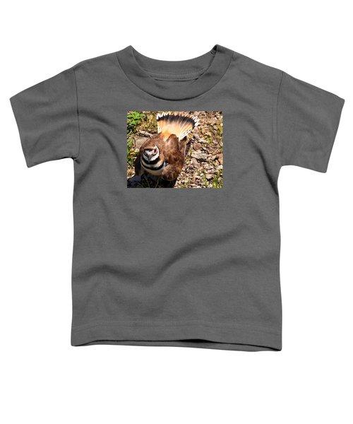 Killdeer On Its Nest Toddler T-Shirt by Chris Flees