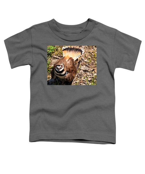 Killdeer On Its Nest Toddler T-Shirt