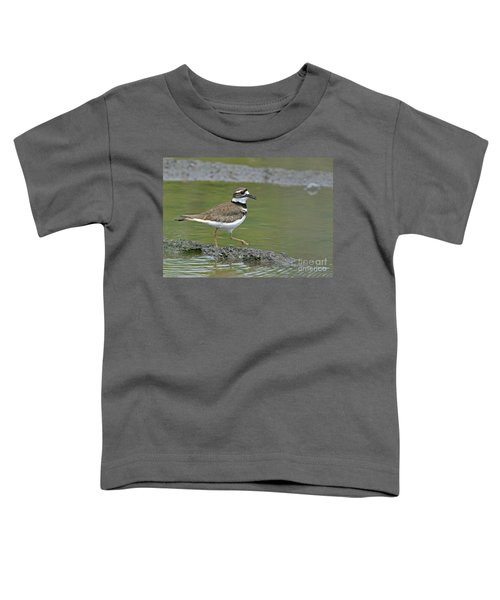 Killdeer Walking Toddler T-Shirt