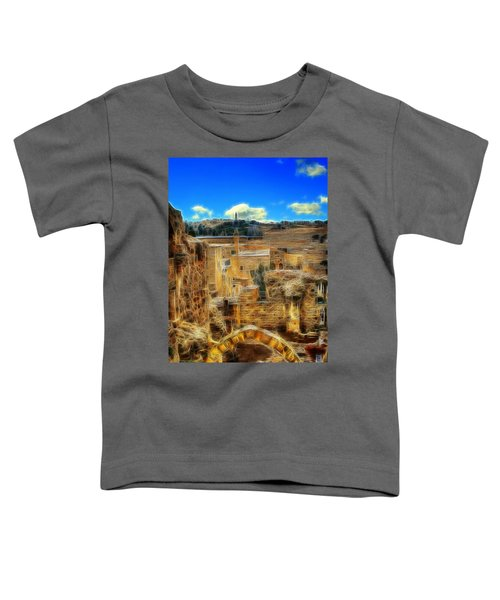 Peaceful Israel Toddler T-Shirt