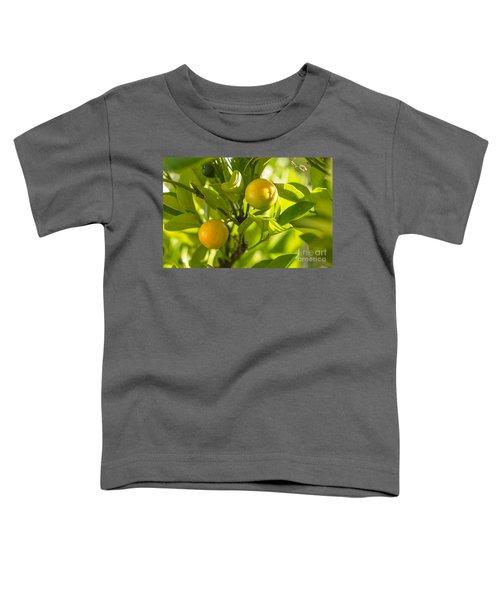 Kumquats Toddler T-Shirt