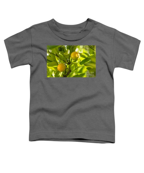 Kumquats Toddler T-Shirt