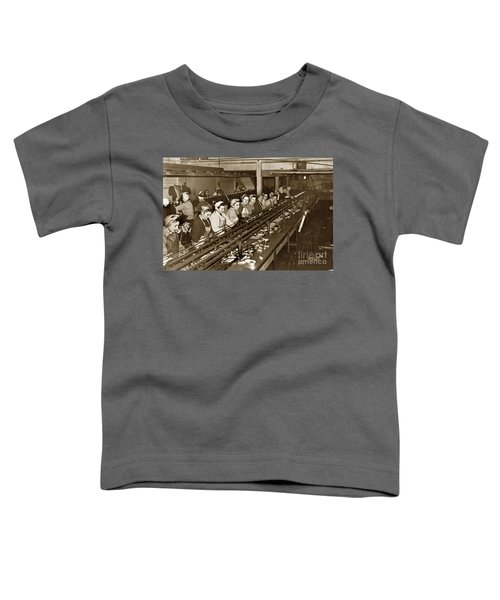 Ladies Packing Sardines In One Pound Oval Cans In One Of The Over 20 Cannery's Circa 1948 Toddler T-Shirt