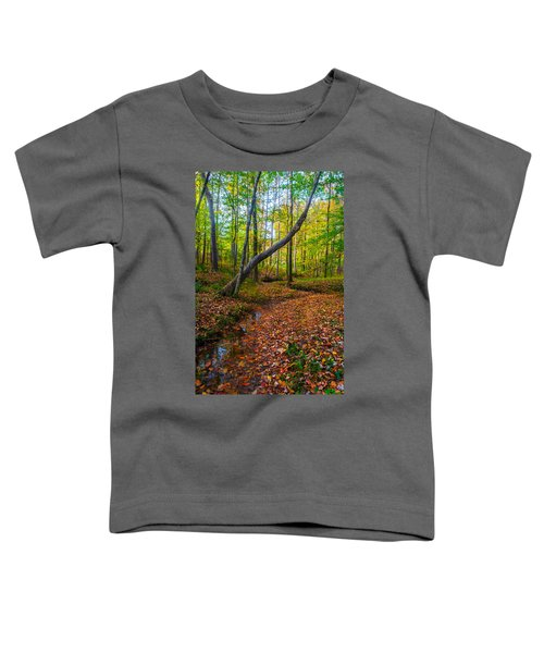Land Of The Fairies Toddler T-Shirt