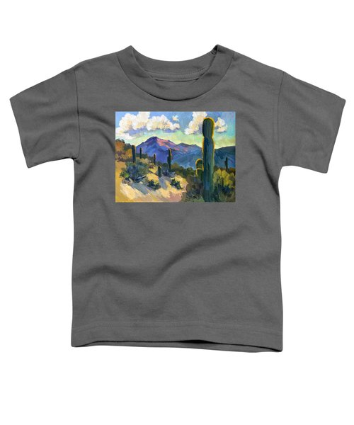 Late Afternoon Tucson Toddler T-Shirt