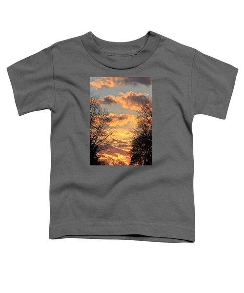 Light Catcher Toddler T-Shirt