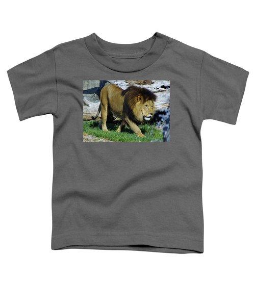 Lion 1 Toddler T-Shirt
