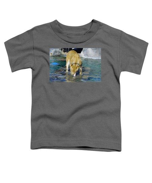 Lion 3 Toddler T-Shirt