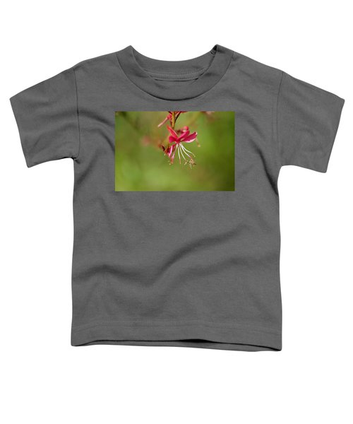Little Bug On The Tip Of A Flower Toddler T-Shirt
