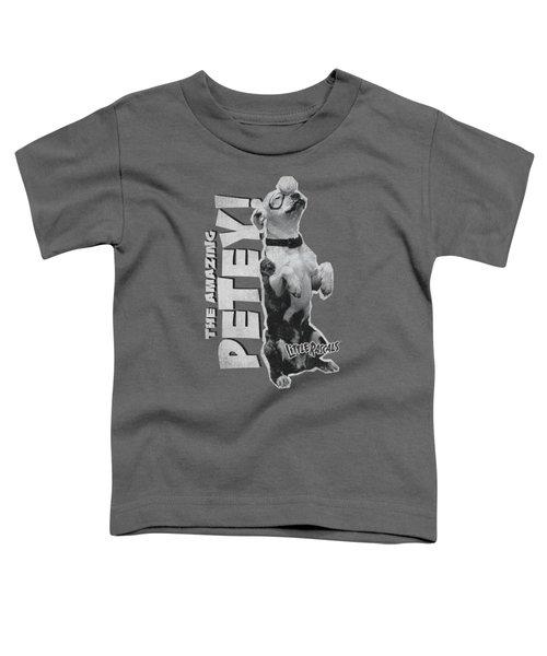 Little Rascals - Amazing Petey Toddler T-Shirt
