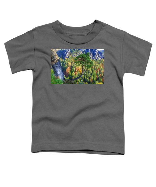 Lonely Tree In The Elbe Sandstone Mountains Toddler T-Shirt