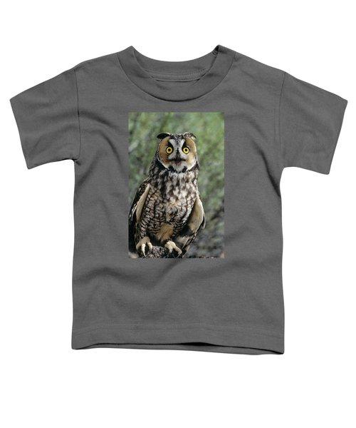 Long Eared Owl Asio Otis Europe, Asia Toddler T-Shirt