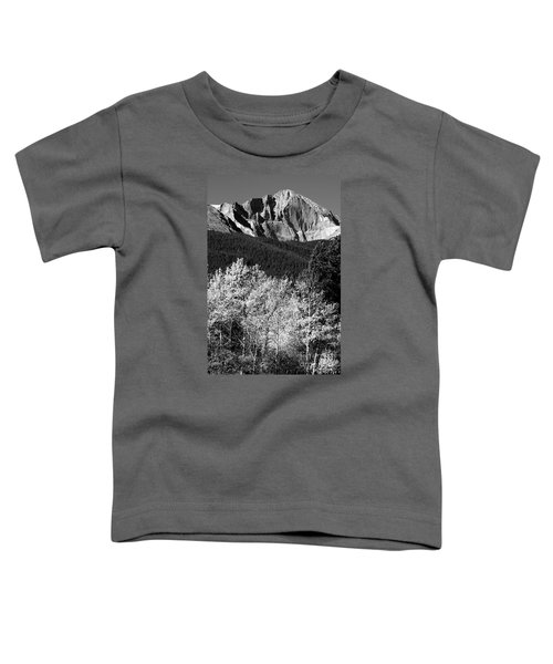 Longs Peak 14256 Ft Toddler T-Shirt by James BO  Insogna