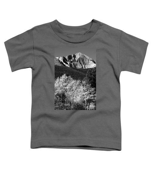 Longs Peak 14256 Ft Toddler T-Shirt