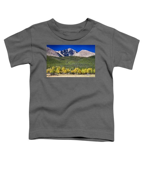 Longs Peak A Colorado Playground Toddler T-Shirt