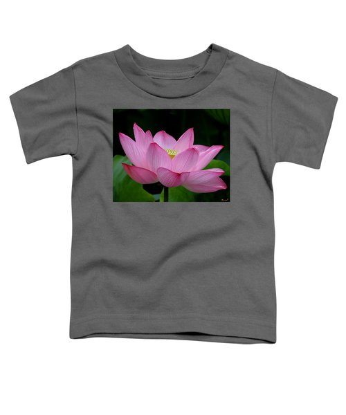 Lotus-center Of Being IIi Dl033 Toddler T-Shirt