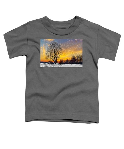 Magical Winter Sunset Toddler T-Shirt
