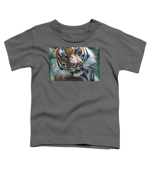 Malayan Tiger Toddler T-Shirt