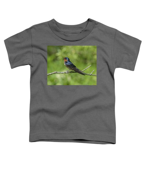 Male Barn Swallow Hirundo Rustica Dsb262 Toddler T-Shirt