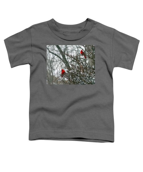 Male Cardinal Pair Toddler T-Shirt