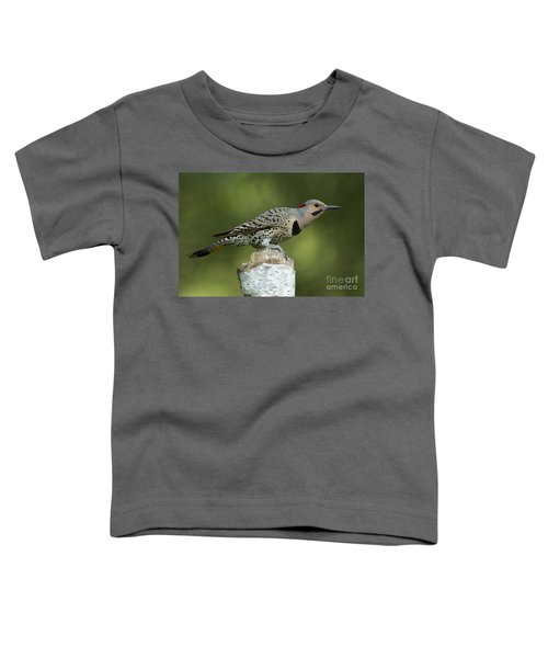 Male Northern Flicker Toddler T-Shirt