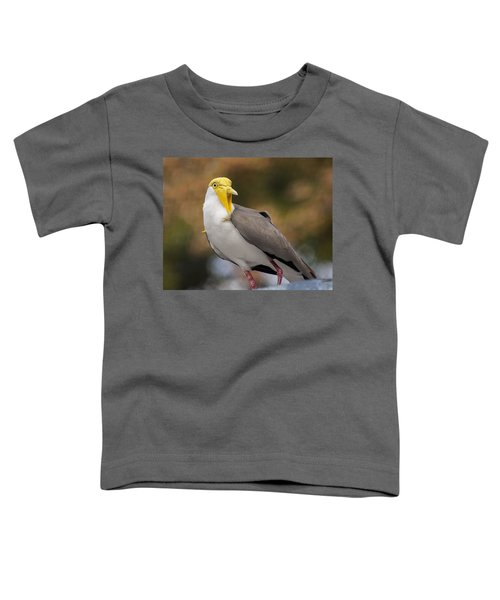 Masked Lapwing Toddler T-Shirt by Carolyn Marshall