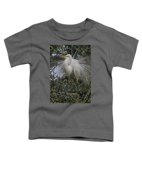 Mating Plumage Toddler T-Shirt