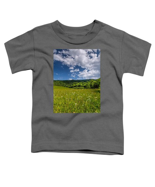 Black Rock Mountains Toddler T-Shirt
