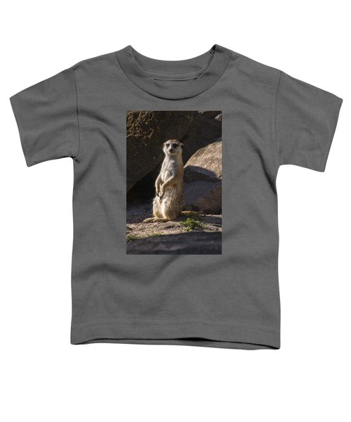 Meerkat Looking Forward Toddler T-Shirt by Chris Flees