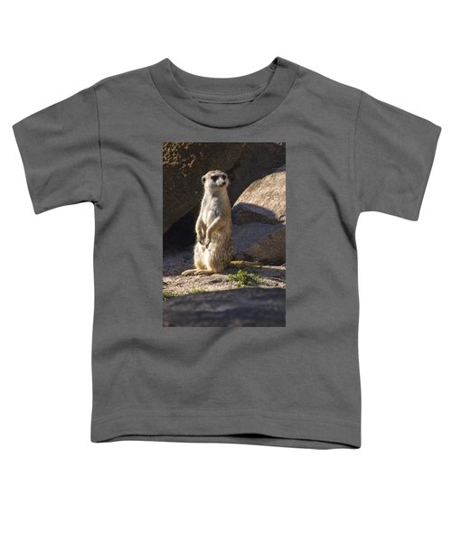 Meerkat Looking Left Toddler T-Shirt by Chris Flees