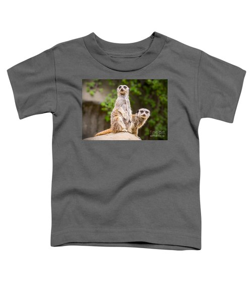 Meerkat Pair Toddler T-Shirt by Jamie Pham