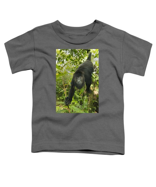 Mexican Black Howler Monkey Belize Toddler T-Shirt
