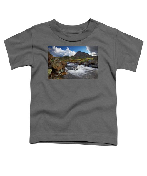 Mighty Tryfan  Toddler T-Shirt