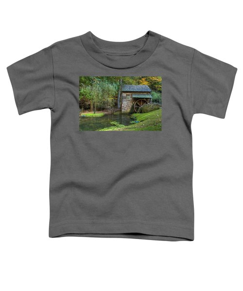 Mill Pond In Woods Toddler T-Shirt
