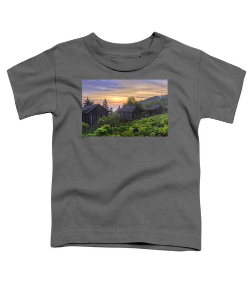 Misty Dawn At Mt Le Conte Toddler T-Shirt