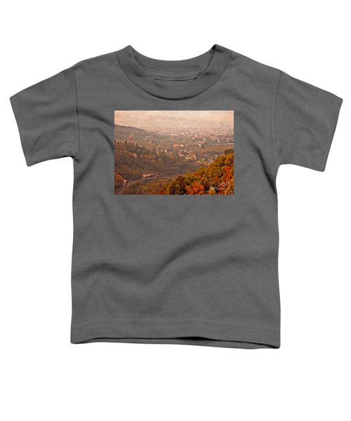 Misty Morn O'er Florence Toddler T-Shirt