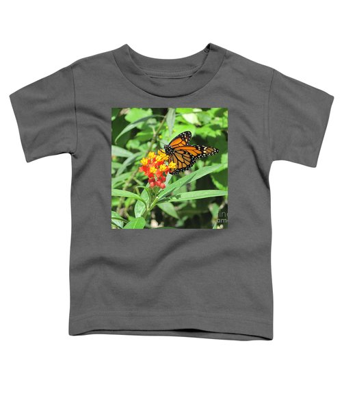 Monarch At Rest Toddler T-Shirt