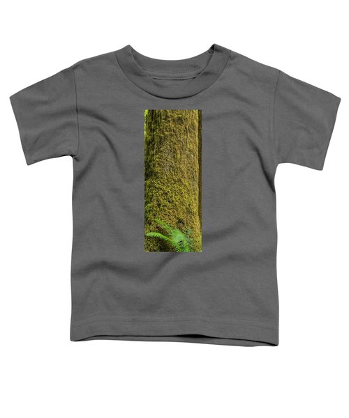 Moss Covered Tree Olympic National Park Toddler T-Shirt by Steve Gadomski