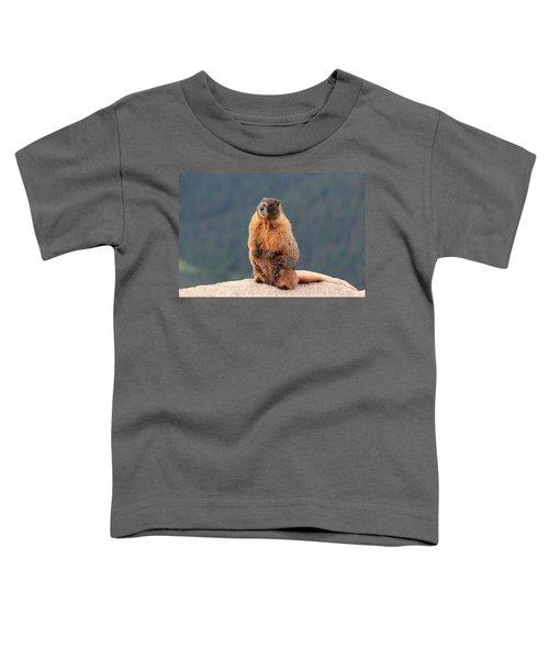 Mother Marmot Toddler T-Shirt