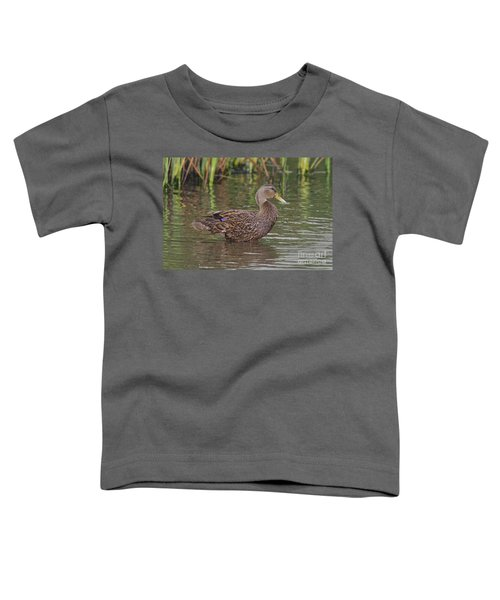 Mottled Duck Drake Toddler T-Shirt