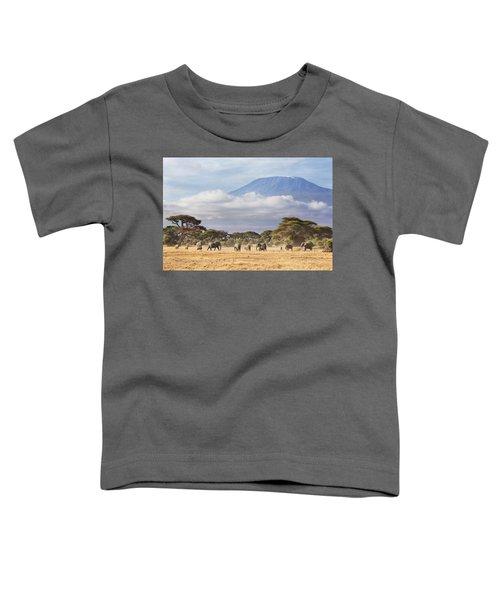 Mount Kilimanjaro Amboseli  Toddler T-Shirt