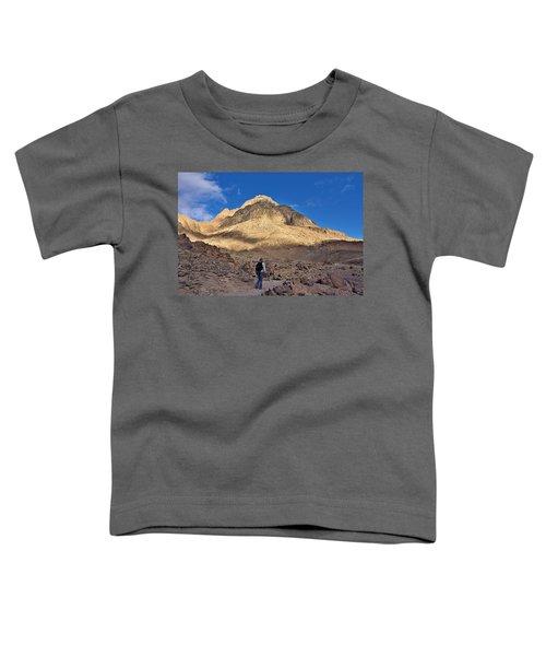 Mount Sinai Toddler T-Shirt