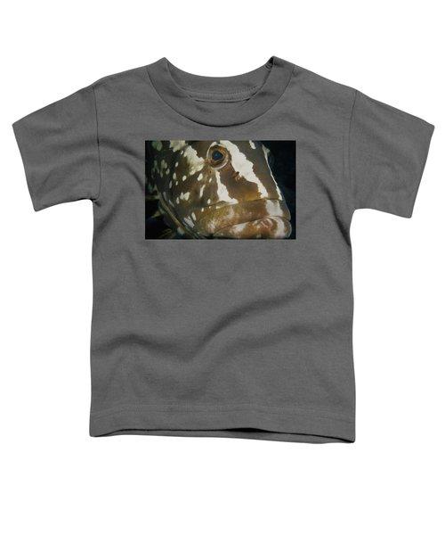 Mr. Grouper Toddler T-Shirt