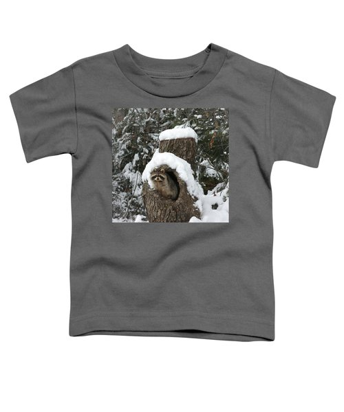 Mr. Raccoon Toddler T-Shirt